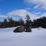 Nature in Finland and the Lakes snow