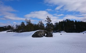 Nature in Finland and the Lakes