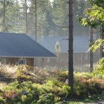 Nature in Finland and the Lakes cabins in the morning